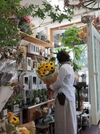 夏のつかれにおすすめ!ヘッドスパ効果ばっちり - ルーシュの花仕事