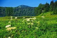 夏の燧ケ岳 - 風の香に誘われて 風景のふぉと缶