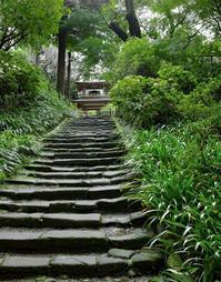 階段から坂へ - ようこそ風の散歩へ