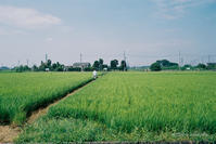 田園風景 - BobのCamera