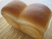 食パン - さんころのにっき