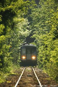 夏色のトンネル - PTT+.
