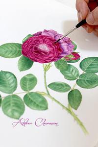 生徒さん作品② - Atelier Charmant のボタニカル・水彩画ライフ