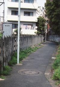 2018年春、奥渋を起点に歩く 5 - 散歩日和