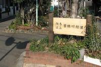 田柄川緑道 練馬自歩通路42-1号線 起点 - Fire and forget