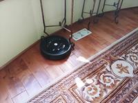 新しく買った掃除機2台とルンバでサンバ - コテージ便り