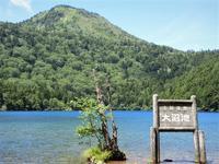 上信越志賀高原で池めぐり(大沼池~木戸池)Mount Shiga and many lakes in Jōshin'etsu-kōgen National Park - やっぱり自然が好き