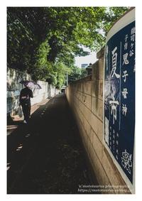 夏市 - ♉ mototaurus photography