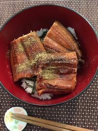 安い鰻をおいしく食べるコツ - アバウトな情報科学博士のアメリカ