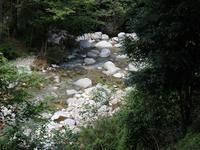 『粥川の矢納滝周辺を歩いて・・・・・』 - 自然風の自然風だより