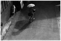 日傘 - BobのCamera