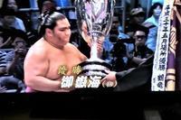 大相撲名古屋場所は関脇御嶽海が優勝に輝く、御嶽海関優勝おめでとう - 藤田八束の日記