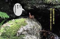 天気が続いているしミソ祭り! - Weblog : ちー3歩