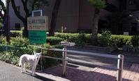 Vol.1366 池上新町2丁目公園 - 小太郎の白っぽい世界