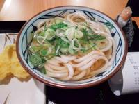 Say it's a kind of Sanuki Udon... (Marugame Udon BGC) - SONGS