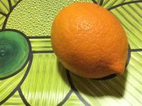 風邪引きさんの為の大人の蜂蜜レモン - ダイアリー