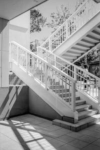 炎暑の外部階段にまとわりつく光蜥蜴 - Silver Oblivion