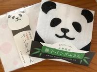 好きなもの・中川政七商店ふきん 〜親子パンダふきん〜 - y-hygge