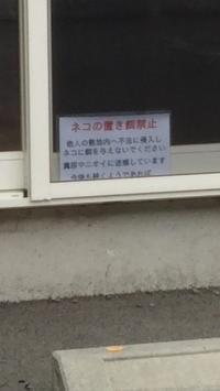 ペット向け看板コレクション31 - ウンノ整体と静岡の夜