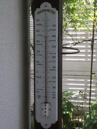 大暑 - りきの毎日