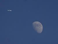 お月さんの写真 - 写真で楽しんでます!