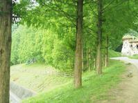 トーベ・ヤンソンあけぼの子どもの森公園・夏 - さて。月でも見るか。