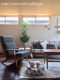 【インテリア】リビング全景&マルチクロスで夏のソファをこざっぱり模様替え♪ - 10年後も好きな家