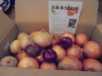 淡路島の 「あさひ」さんから「特別栽培有機肥料使用玉ねぎ約10キロ」届きました! - 初ブログですよー。