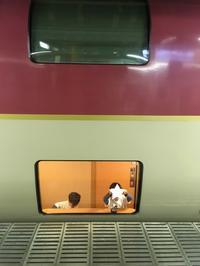 夢のサンライズエクスプレスに乗って静岡へ!② - 子どもと暮らしと鉄道と