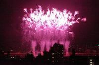 東京花火の一番乗り。暑い夏を足立の花火で涼んで下さい(第二弾) - 旅プラスの日記