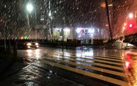 出掛ける時は猛暑だったのが帰りは嵐のような土砂降り! - 写真家 永嶋勝美の「散歩の途中で . . . !」