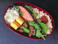 7/25 鮭弁当 - ひとりぼっちランチ