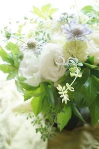 儚さを楽しむ! - お花に囲まれて