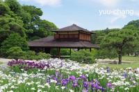 2018.6.14花菖蒲咲く延養亭 - 下手糞PHOTO BLOG