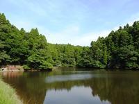 夏の風景 - 千葉県いすみ環境と文化のさとセンター