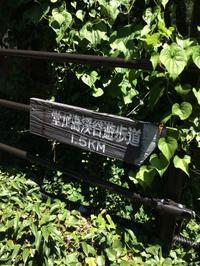 知る人ぞ知る!箱根堂ヶ島遊歩道を行く。 - はこね旅市場(R)日記