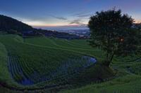 雲海を遠目に・・ - katsuのヘタッピ風景