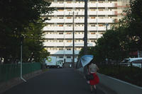 無題写真 - IN MY LIFE Photograph