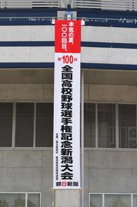 第100回全国高校野球選手権記念新潟大会 決勝戦 - the best shot Ⅳ