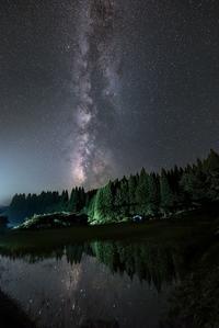 杉林の上に立ち昇る天の川 - Qualia