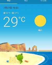 夏らしい天気が続きます - ちゃたろうとゆきまま日記