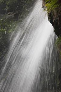 滝風⑹ - 風のひいじじ