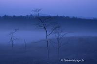 早春の朝霞み - ekkoの --- four seasons --- 北海道