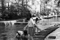 樹雨月 寫誌 ⑯ 水辺で遊ぶ… - le fotografie di digit@l