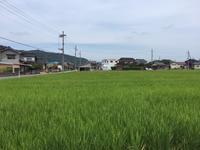 真夏の写真撮影 - fyblog