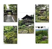 京都散歩 - 雪割草 - Primula modesta -