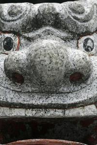 阿吽@堀之内氷川神社 - みるはな写真くらぶ