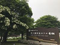 2018年青森・函館旅行その2 奥入瀬渓流ホテルと渓流散策 - ひなたぼっこ