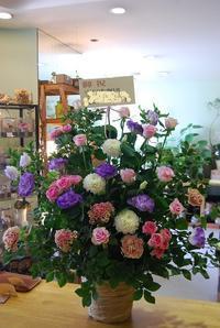 御祝のアレンジメントご紹介 - 花と暮らす店 木花 Mocca