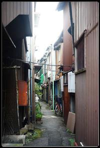 千住散歩 -749 - Camellia-shige Gallery 2